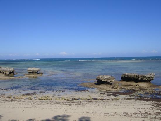 Laguna Blu Resort: the view from the restaurant