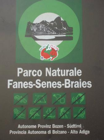 Hotel Pragser Wildsee: parco naturale