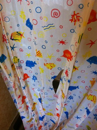 Prince Regent Hotel: Ripped shower curtain