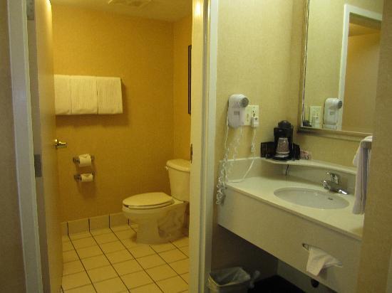 Courtyard Decatur: Bathroom
