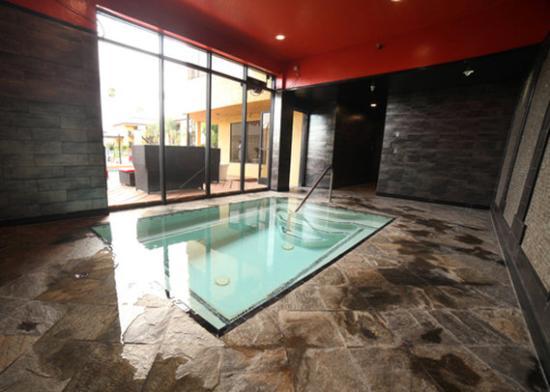 Hotel Le Reve Pasadena: Indoor Whirlpool