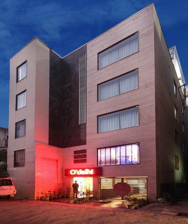 Hotel O'Delhi: Night vies