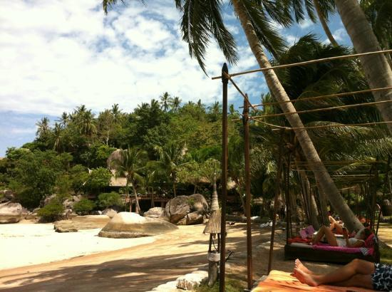 Koh Tao Cabana: the resort