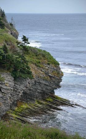 Croisieres aux Baleines Parc de Forillon: Falaise escarpée, sentier les Graves