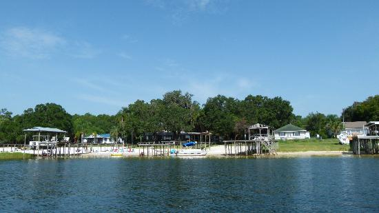 The Nest on Lake Weir: lake side