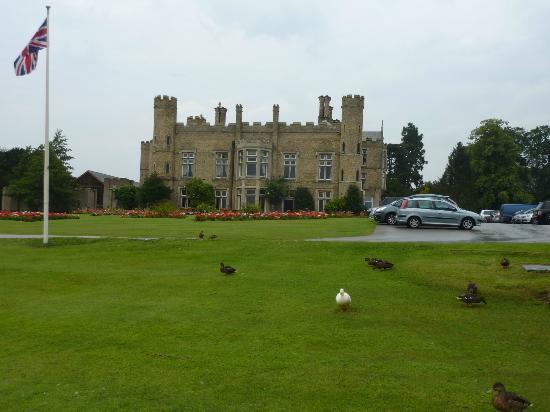 Cave Castle Hotel & Country Club : grounds ,lots of ducks wondering around