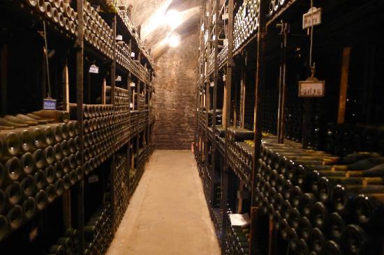 Bouchard Père & Fils : The cellars