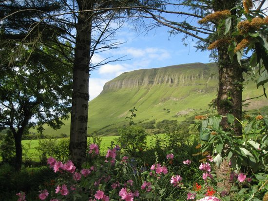 Benbulben Farmhouse B&B: The view from the car park beside the house,