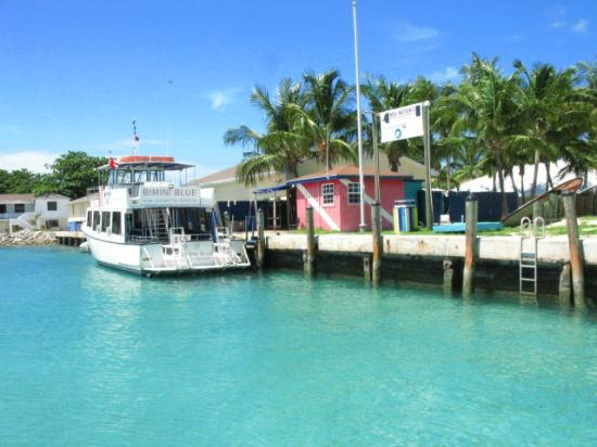 Bimini Big Game Club Resort & Marina: Dive shop and boat