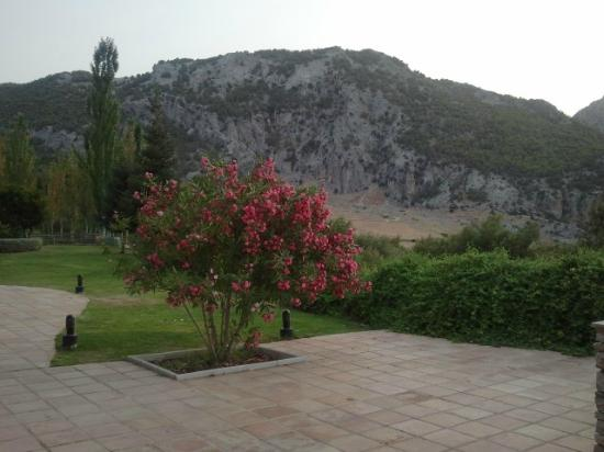 Hotel Fuerte Grazalema: giardini