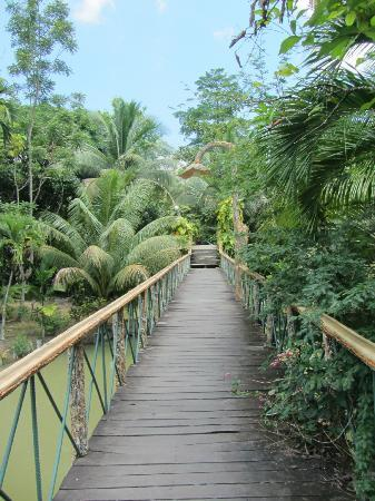 Sepilok Jungle Resort: Brücke