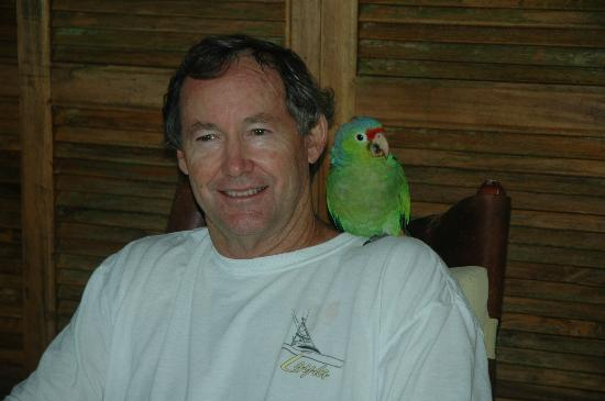 Bosque del Cabo Rainforest Lodge: Bill with friendly parrot