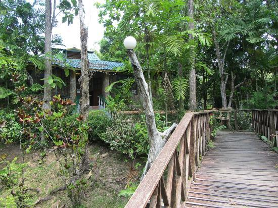 Sepilok Jungle Resort: Lodge
