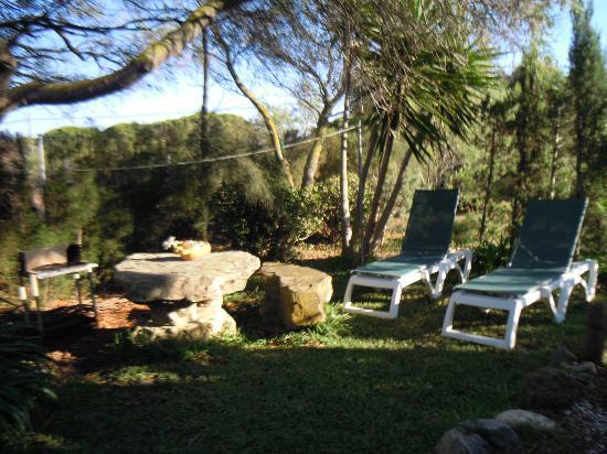 Casa Meca : Jardín privado