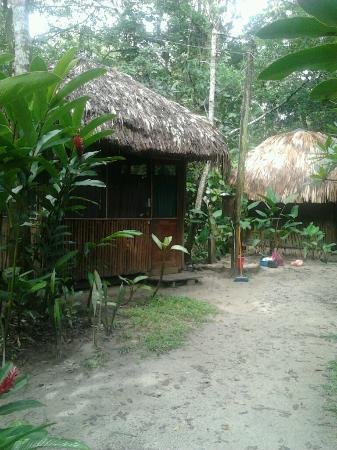 El Panchan: Cabana di Jungle Palace