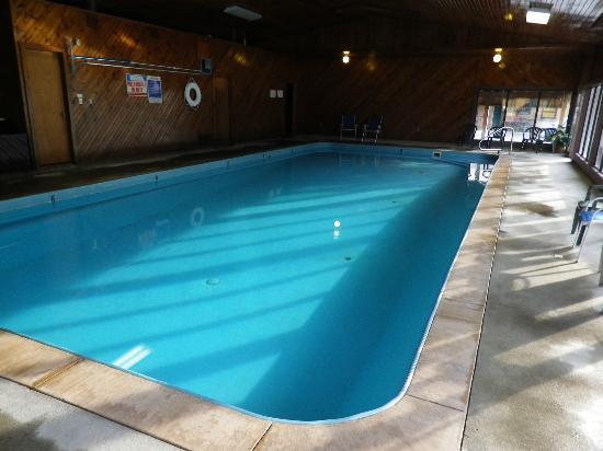 شيف موتل: the lovely pool 