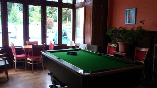 Treloyhan Manor Hotel: sala biliardo