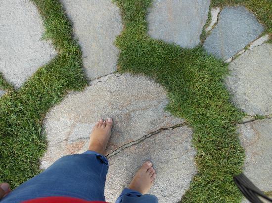 Erlebnis Kränzelhof: Sono al centro del labirinto della vita