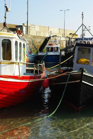 Malin Hotel: Boats