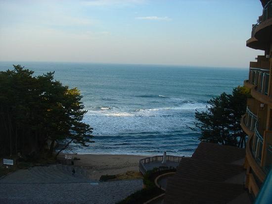 Unomisaki: 建物前の海岸。ただしこちらの海は遊泳禁止
