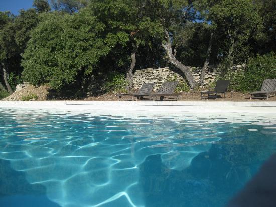 Mas des deux Puits : la isolata piscina immersa tra gli alberi