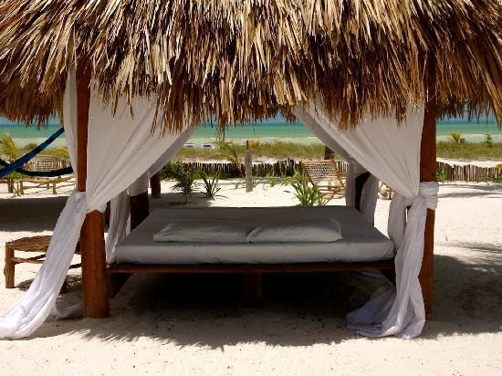 Hotel Casa Palapas del Sol: Palapabed on the beach of Palapas del Sol