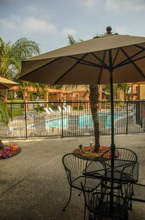 CW Suites Hotel - John Wayne Airport: Pool Area