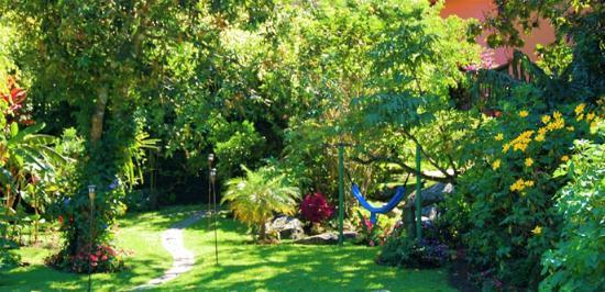 Boquete Garden Inn: Relax in one of our hammocks.