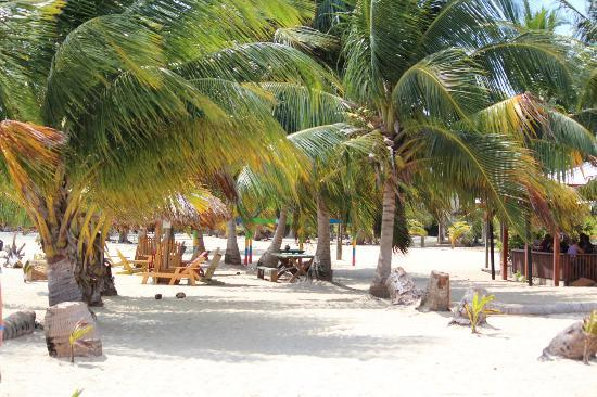 Captain Jak's Cabanas: Beach 2 minutes away