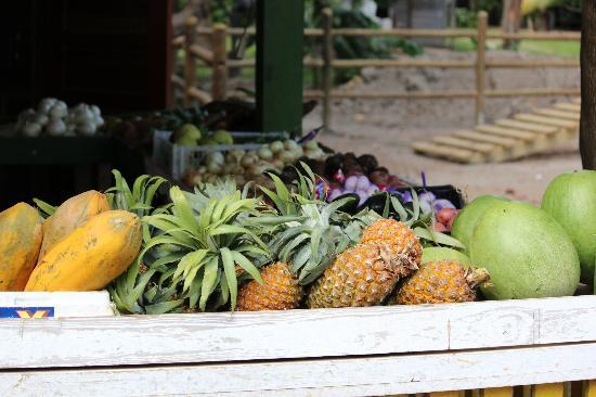 Captain Jak's Cabanas: at the fruit market next door