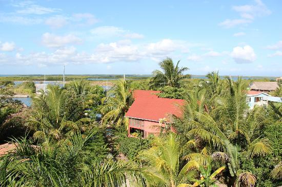Captain Jak's Cabanas: View from the look out on the villa