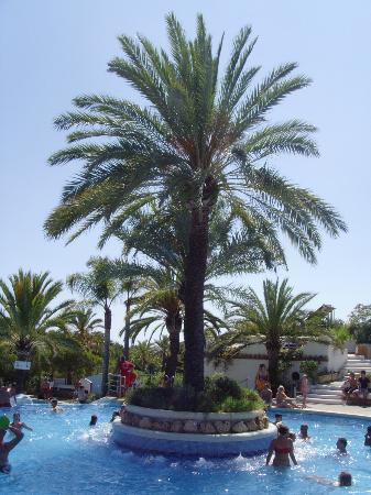 park playa bara pool