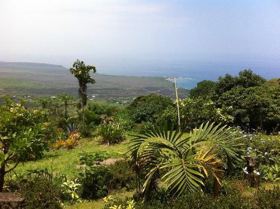 Ka'awa Loa Plantation : Stunning ocean and property views