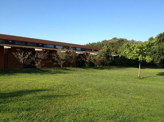 Mas Salvi Hotel : habitaciones con pequeña terraza privada que da al bosque y jardin