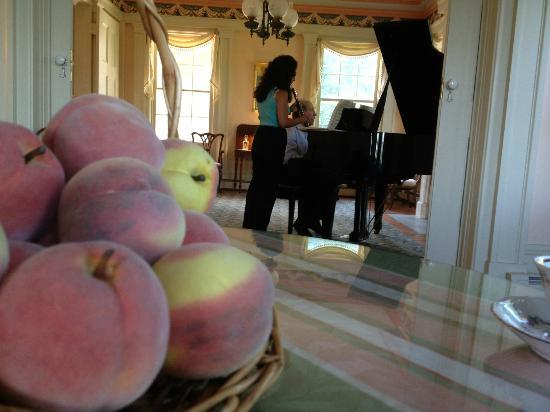 Peach Grove Inn: Morning Concert