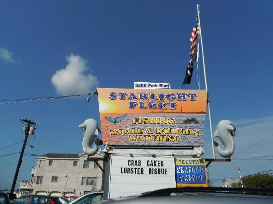 JJC Boats Inc.: Starlight Fleet JJC boats