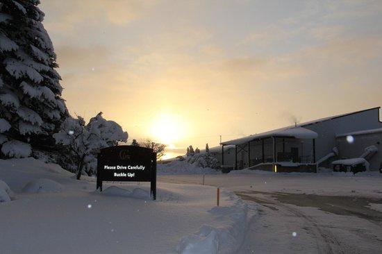 Chateau Grand Traverse Winery: Winter Sunrise
