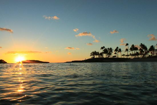 Oahu Photography Tours: in the water in oahu
