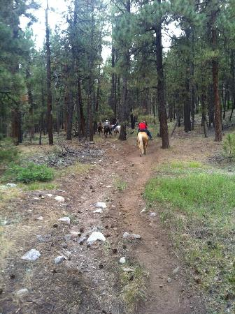 Elk Point Lodge & Cabins: Trail Ride