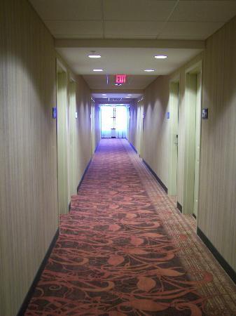 Hampton Inn Marquette/Waterfront: 3rd floor hall.