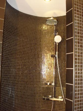 Best Western Plus Hôtel Le Rhénan : Shower