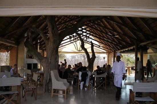 Kapama Southern Camp: La sala ristorante