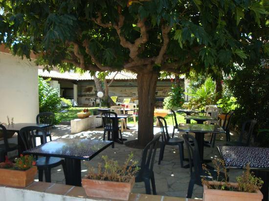 Hotel le Mirage : Jardin
