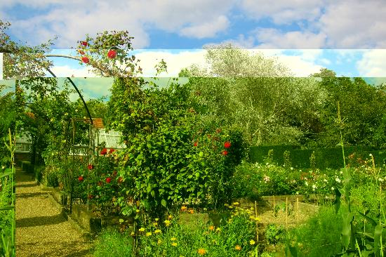 Marle Place Gardens and Gallery: Vegetable garden