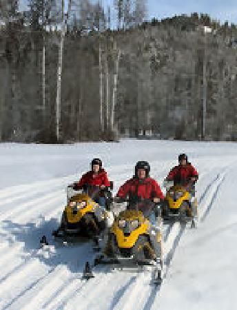 Mountain Springs Lodge Snowmobile Tours: getlstd_property_photo