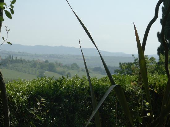 Villa Scacciapensieri: La vue de la terrasse de l'hôtel