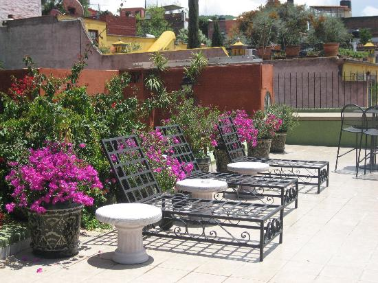Casa Schuck Boutique Hotel: The Rooftop Terrace