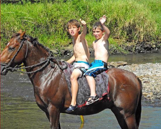 Naveria Heights Lodge Tours: Horseback riding