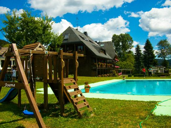 Hotel Sonnenmatte : piscina y zona recreo