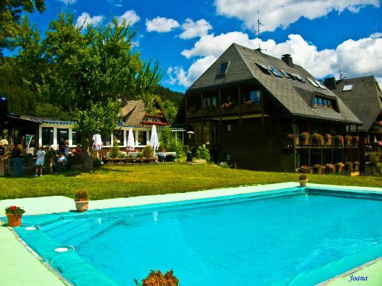 Hotel Sonnenmatte: Piscina y zona de recreo
